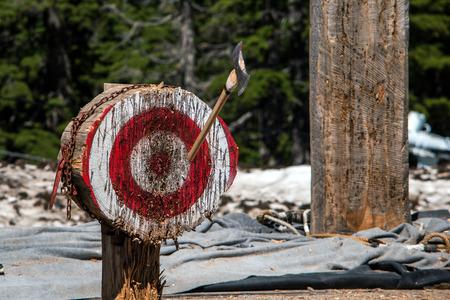 Thrown ax in bullseye, lumberjack competition