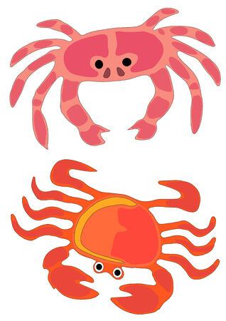 Vector Illustration of two types of ocean crabs in playful colors. Stock Illustratie