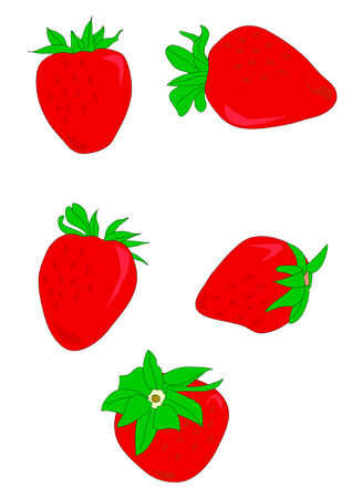 separate: Vector illustration of red ripe strawberries with green tops.