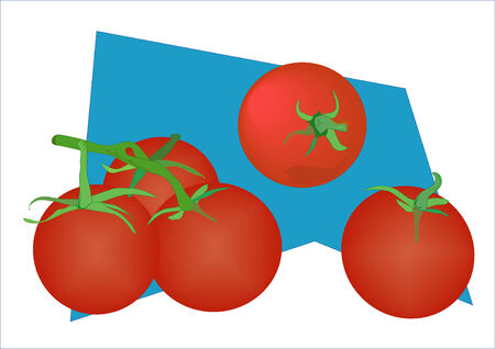 groupings: Vector illustration of tomatoes in different profiles and groupings.