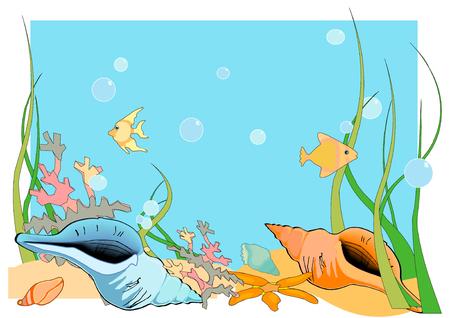 Vectorillustratie van een oceaan vloer, met schelpen en vissen en koraal.