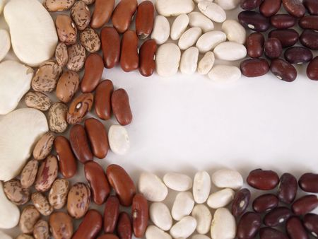 Assorted dried Beans separated and placed into vertical rows