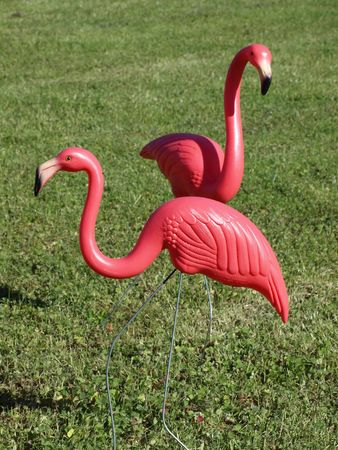 Two plastic pink flamingos on a green lawn