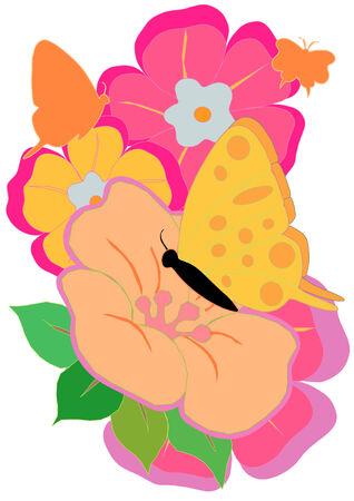 Eine Vektor-Illustration von rosa und orange Blüten mit einem Butterfly Standard-Bild - 3396939