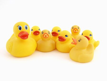 A Yellow Rubber Duck mother and her chicks isolated on a white background photo