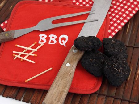 Items used for a Barbeque, including charcoal, wooden matches and a bright red pot holder.