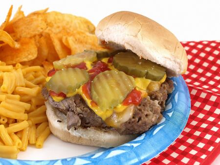 homestyle: Delicious picnic barbecue fare, homestyle burger, macaroni and cheese, and chips. Served on a paper blue plate, with disposable plastic fork and knife.
