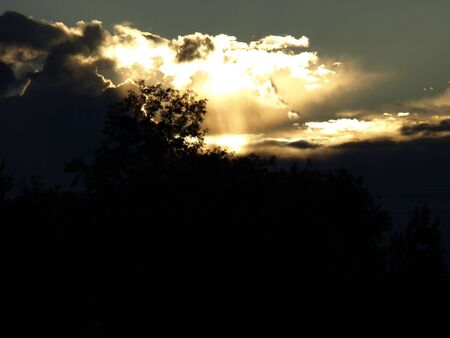 Treetops silhouetted against the evening sky, sun rays beaming down from a sunlit cloud at dusk. Stock Photo
