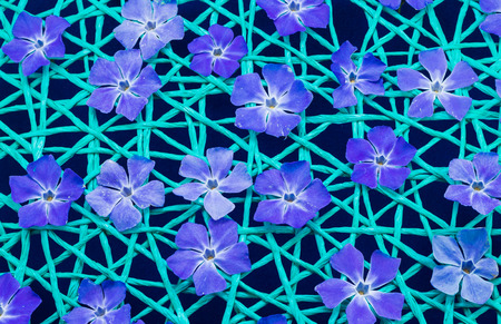 Blue flowers on a green string net.