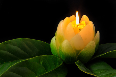 Candle in the shape of a Magnolia flower on green leaf. Stock Photo