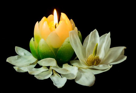 Candle in the shape of a Magnolia flower with a real flower next to it. Stock Photo