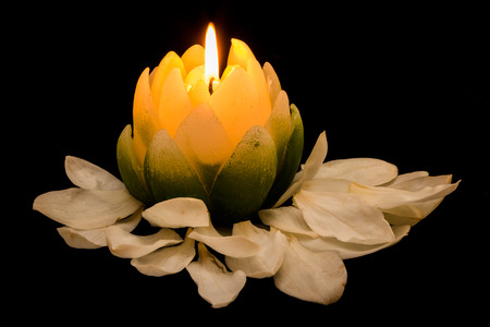 Candle in the shape of a Magnolia flower with petals around it.