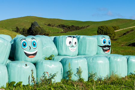 Wrapped up hay bales with happy faces.