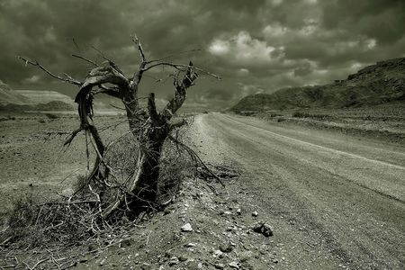 genre: Desert road #2.