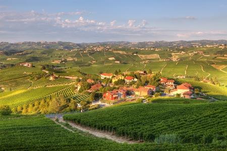 ブドウ畑とピエモンテ、イタリア北部の丘の中の小さな村に表示します。