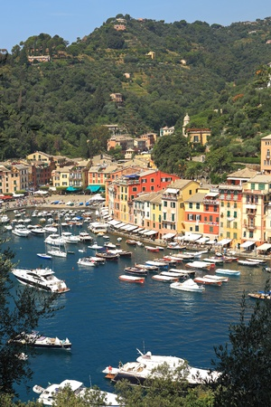 Vertical oriented image of famous town of Portofino with small bay full of yachts and boats on Ligurian sea, northern Italy. photo