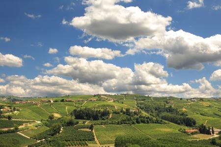 イタリア北部ピエモンテ州で白い雲と美しい青空の下でブドウ畑と緑豊かな丘に表示します。