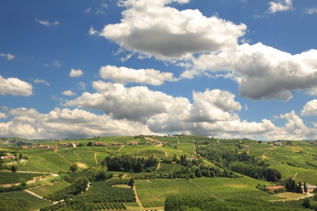 View on green hills with vineyards under beautiful blue sky with white clouds in Piedmont, Northern Italy.