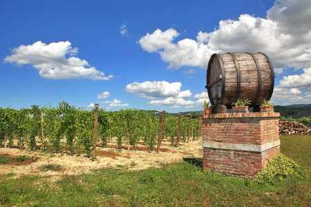 piedmont: Big wooden wine cask against vineyard under beautiful blue sky with white clouds in Piedmont, Northern Italy.