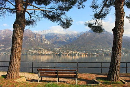 lake como: Bench between two trees on the promenade along the mountains and Lake Como in Italy.