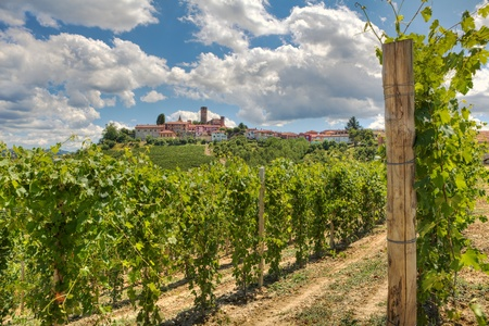 Horizontal oriented image of beautiful view on vineyards and small town on the hill in Piedmont, Northern Italy