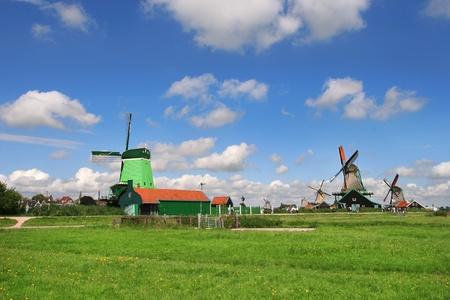 zaanse: Windmolens langs groene velden onder mooie blauwe hemel met witte wolken op de Zaanse Schans - beroemde dorp in Nederland Stockfoto