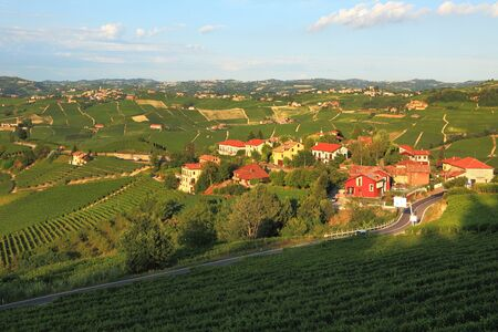 View on small village among vineyards in Piedmont, Italy  photo