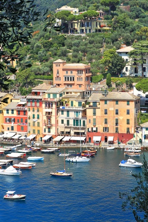 Vertical oriented image of Portofino and bay with yachts and boats on Ligurian sea, Italy Stock Photo - 13292035