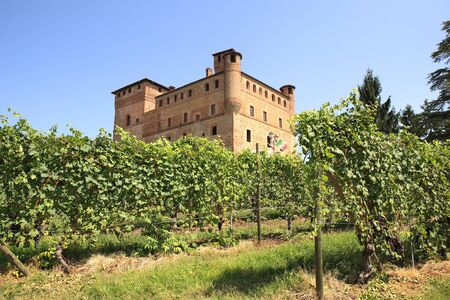 Old castle of Grinzane Cavour as seen through vineyards in Piedmont, northern Italy