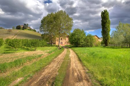 unpaved road: Rural unpaved road among green meadows leading toward winery under cloudy sky in Piedmont, Northern Italy  Stock Photo