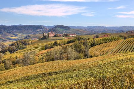 View on beautiful yellow hills and vineyards and old castle on background at fall in Piedmont, Northern Italy. photo