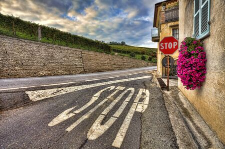 Stop sign on the narrow road among old house and vineyards under cloudy sky in Piedmont, Northern Italy. photo