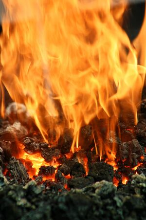 ember: Vertical oriented image of coal burn in fire  Stock Photo