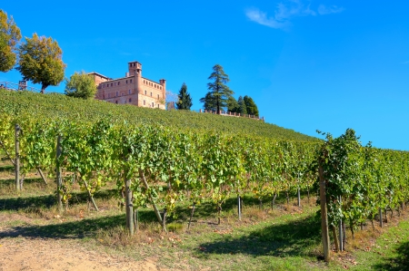 cavour: Medieval castle of Grinzane Cavour among vineyards on the downhill under clear blue sky in Piedmont, Northern Italy  Stock Photo