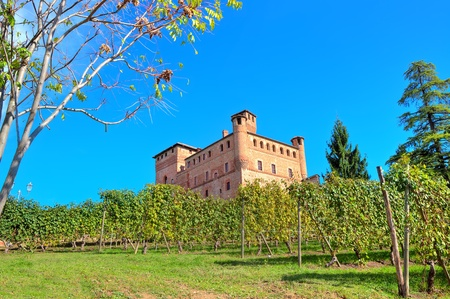 cavour: View of medieval castle of Grinzane Cavour among vineyards on the downhill under clear blue sky in Piedmont, Northern Italy