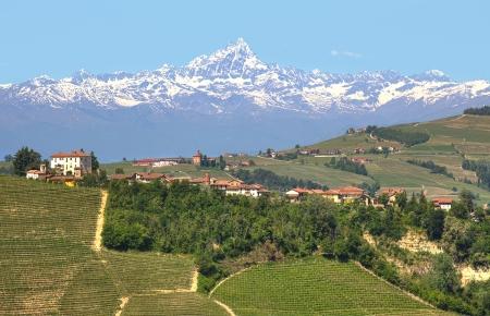 イタリアのピエドモント州の背景に雪で覆われてブドウ園と至近でアルプスの山と丘の上の小さな村 写真素材