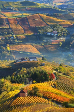 Vertical oriented image of rural houses on autumnal hills among vineyards of Langhe in Piedmont, Northern Italy  view from above