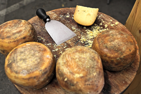 cheese knife: Small wheels of pecorino and cheese knife on wooden table  Stock Photo