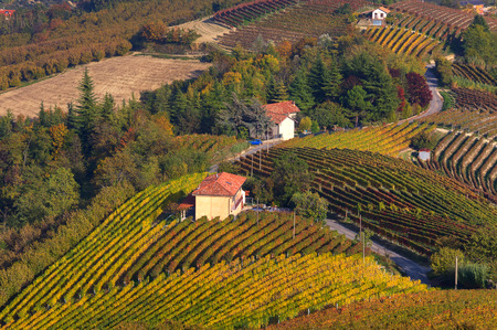 Rural house among autumnal vineyards on the hills of Langhe in Piedmont, Northern Italy  view from above   photo