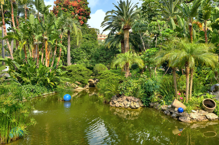 carlo: Little pond among trees and palms at the middle of urban tropical park in Monte Carlo, Monaco  Stock Photo