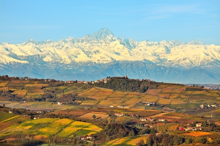 piedmont: View of autumnal hills with vineyards and snowy mountain peaks on background in Piedmont, Northern Italy  Stock Photo