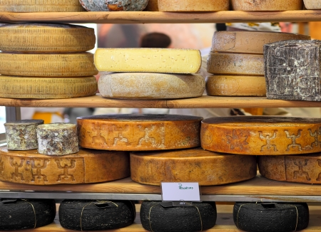 Different hard types of mature cheese on the stand on International Cheese Festival in Bra, Northern Italy  스톡 콘텐츠
