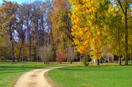 racconigi: Unpaved footpath and trees with multicolored lush foliage on green lawns in autumn at Racconigi parc, Italy