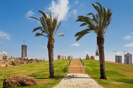 ashdod: Alley in urban park with palms and green grass as residential buildings on background in city of Ashdod, Israel