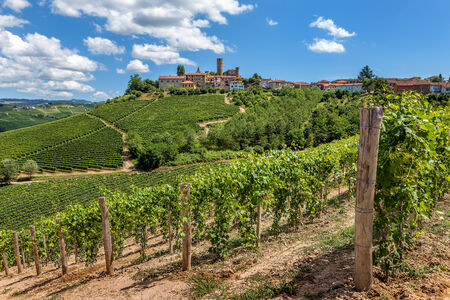 Green vineyards and small town on the hill in Piedmont, Northern Italy