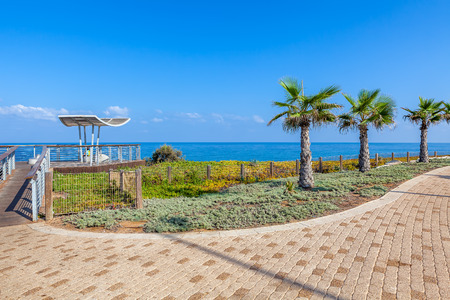 viewpoint: Paved promenade with palms and viewpoint along Mediterranean sea shoreline in Ashkelon, Israel