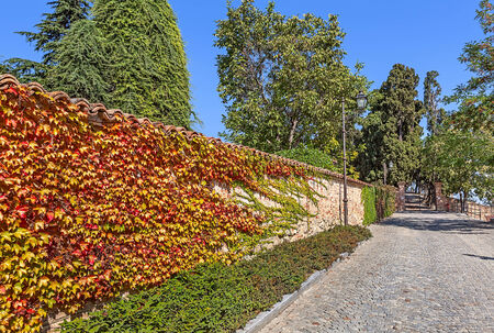 Cobblestone street along brick wall covered with colorful ivy in town of Guarene in Piedmont, Northern Italy. photo