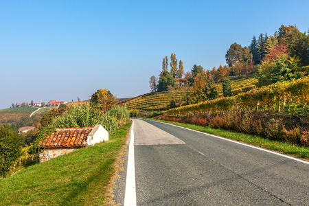 road autumnal: Narrow road among autumnal hills and vineyards under blue sky in Piedmont, Northern Italy.