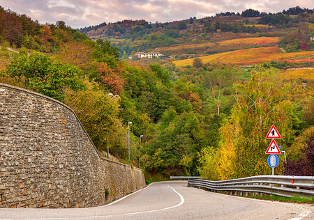 road autumnal: Road and colorful autumnal trees and vineyards in Piedmont, Northern Italy.