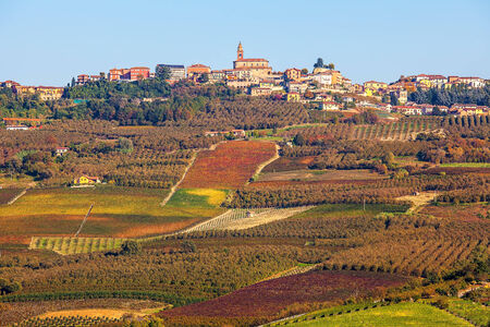 small country town: Autumnal vineyards on the hills and small town on background in Piedmont, Northern Italy.